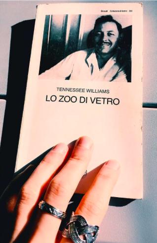lo-zoo-di-vetro
