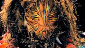 """""""Virus"""" di Björk"""